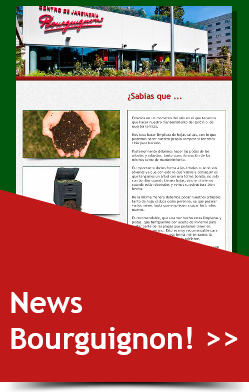 news-bourguignon