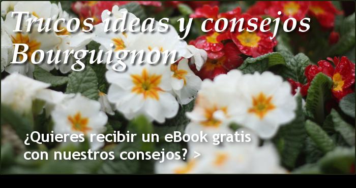 trucos ides y consejos bourguignon