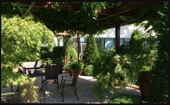 Terraza en edificio de oficinas bourguignonshop for Plantas trepadoras de jardin