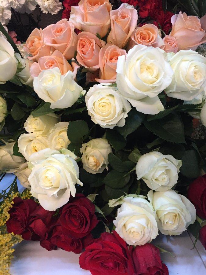 Paquetes de rosas variadas