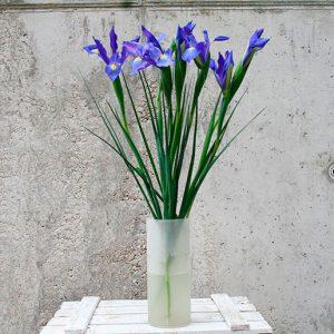 ramo de iris