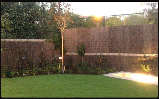 jardín de bajo mantenimiento