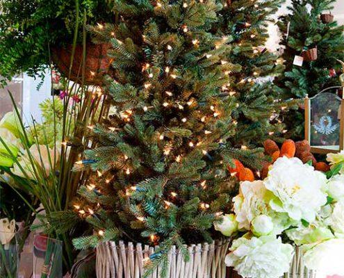 El significado de la Navidad