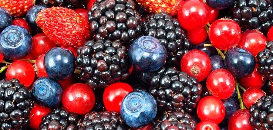 Frutos del bosque en tu terraza
