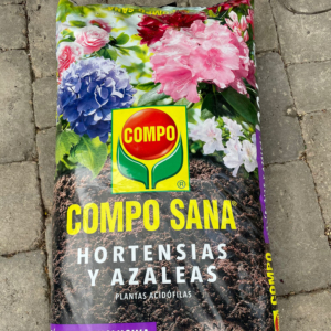 compo sana hortensias y azaleas